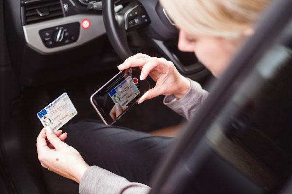 Frau kontrolliert Führerschein im Auto