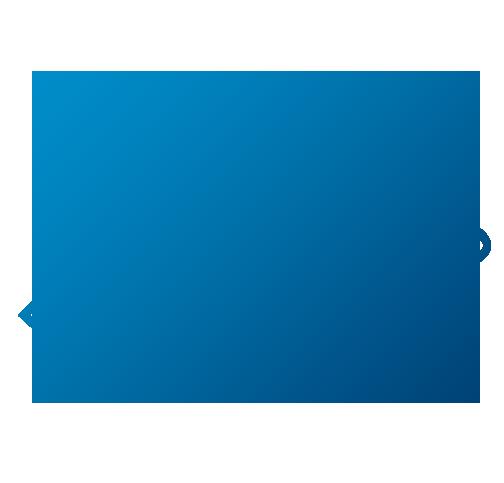 Icon Lösungen für jeden Fuhrpark