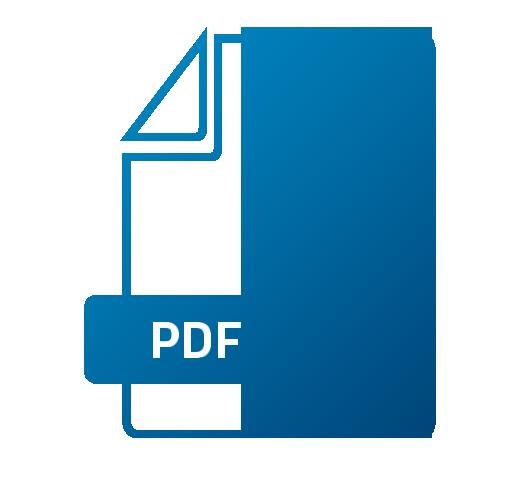 Icon PDF Bereitstellung